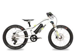 2020/2021 Twenty E-Power Pro 11,5 kg inkl. Pedale